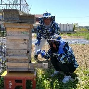 エシカルな生蜂蜜を使用したローチョコレート