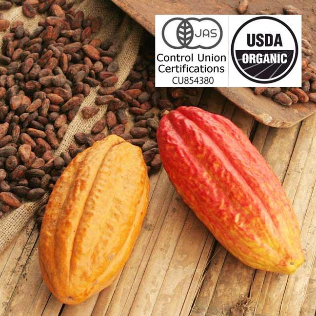 カミーノベルデ農園のオーガニックローカカオのローチョコレート
