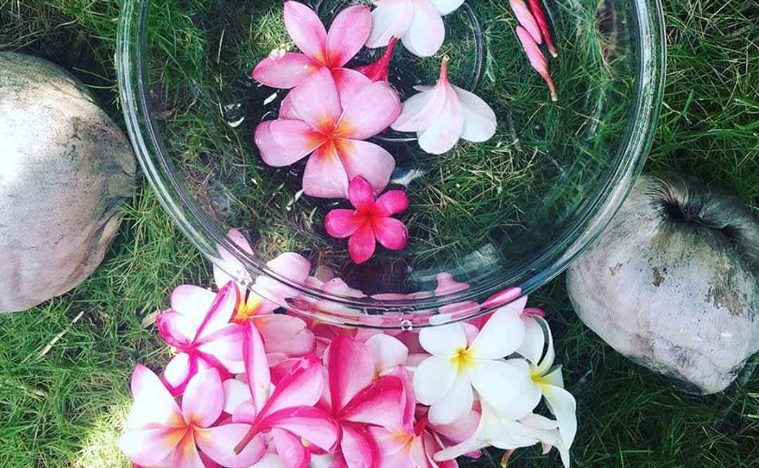 ハワイのお花とローチョコレート